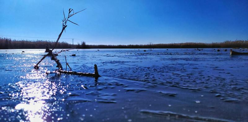 Laguna Navaseca_enero 21